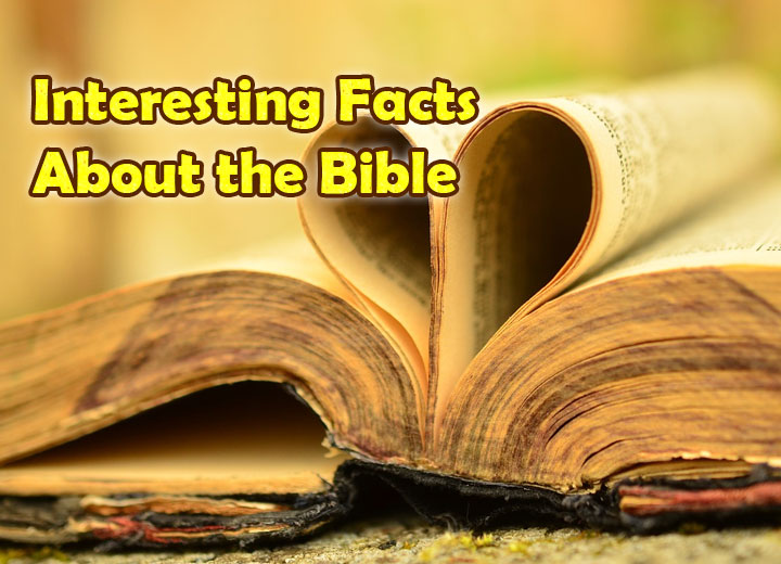 Interesting Facts About the Bible