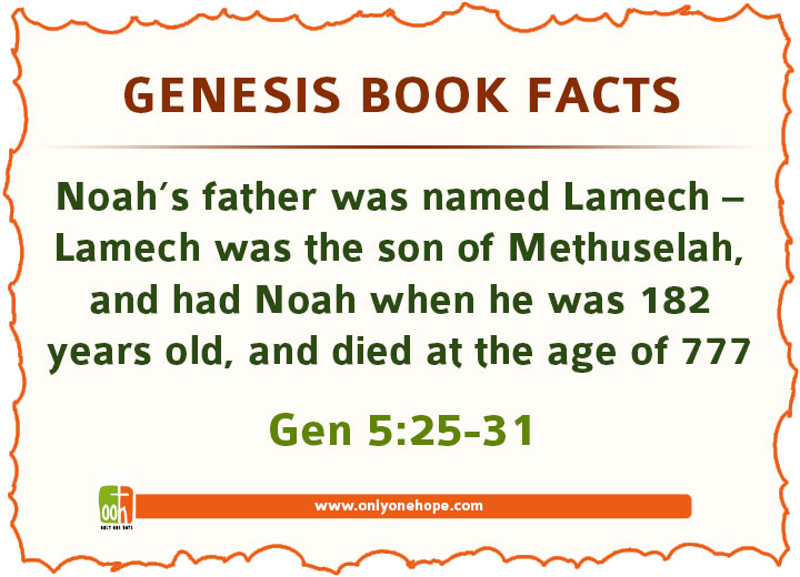 Noah's father was named Lamech – Lamech was the son of Methuselah, and had Noah when he was 182 years old, and died at the age of 777