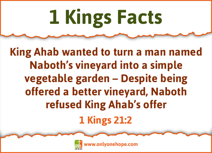 Kings-FACTS-5