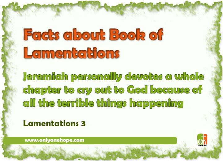 Lamentations-FACTS-10