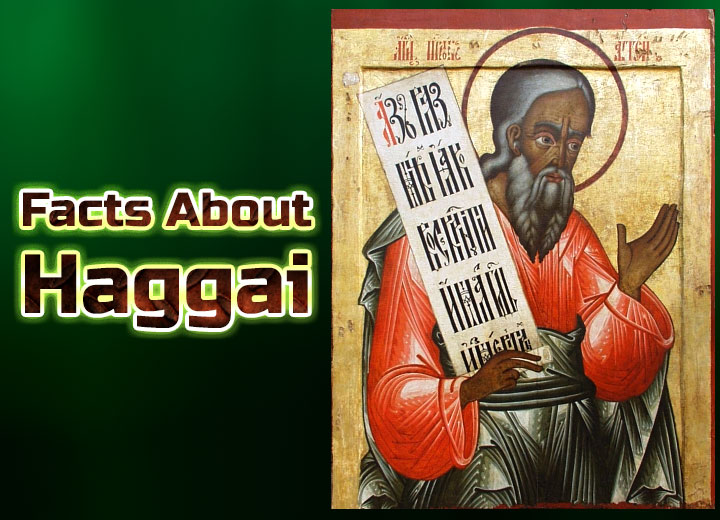 Photo of Facts About Haggai